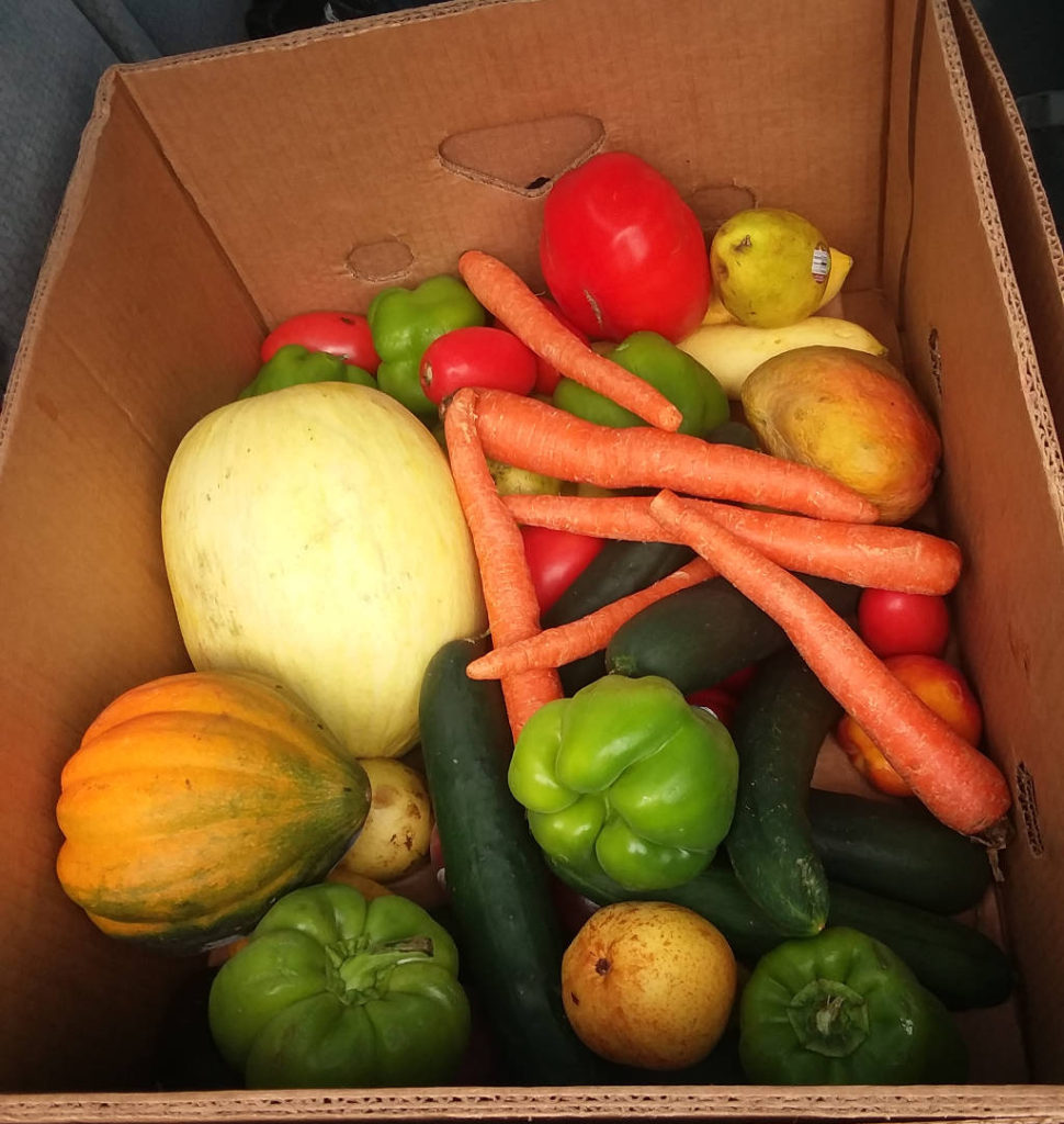 A box of food rescued for charity.